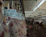 کشتارگاه نجف آباد در عید سعید قربان