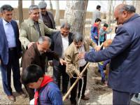 به اتفاق یک درخت در بیشه نجف آباد
