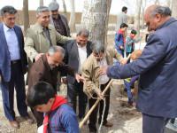 به اتفاق یک درخت در بیشه نجف آباد / بمناسبت گرامیداشت روز درختکاری