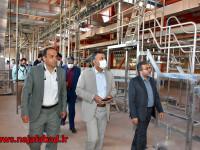 کشتارگاه نجفآباد، آبروی کشور و قطب صادرات خواهد شد