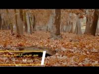 محور تفریحی گردشگری بیشه / پاییز 98