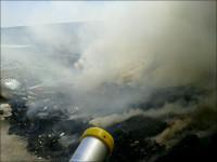 آتش سوزی بزرگ درشهرک صنعتی منتظریه نجف آباد/مرگ جوان 19 ساله در استخر آب کشاورزی
