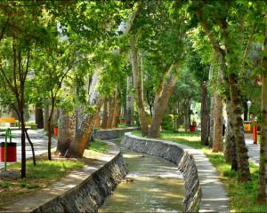 حس خوب گذری در پارکها و بوستانهای نجف آباد زیبا