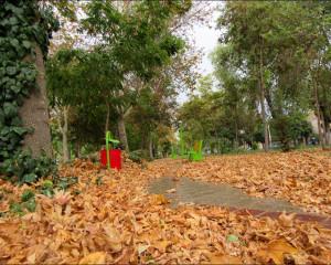حس خوب گذری در نجف آباد در یک روز بارانی / پارک ملت / منطقه پنج