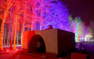 شبهای روشن شبهای رنگی / بیشه زیبای نجف آباد