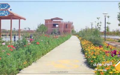 گلهای بهاری 1400