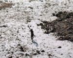 قبیله لختیها: لطفا مزاحم نشوید، وگرنه شما را میکشیم!