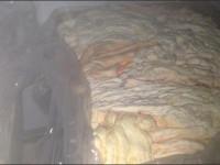 کشف و ضبط یک باب کارگاه غیر مجاز بسته بندی پیه و دنبه در بازدید گروهی شبکه بهداشت و درمان شهرستان نجف آباد+عکس
